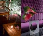 Hotels in Parijs: Les Jardins du Marais | Cityz.nl, alles voor je stedentrip