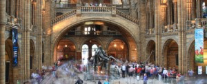 Musea in Londen: Natural History Museum