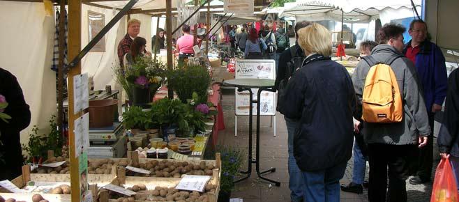 Winterfeldtmarkt