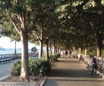 Parken in New York: Battery Park