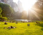 New York, parken: Central Park
